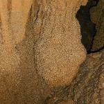 Hollegrotten Cave, Grape Formation