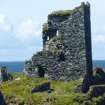 The O Driscoll Castle