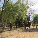 vista del parque 2