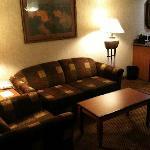 Living Room (sleeper sofa)