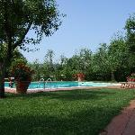 The view towards the pool