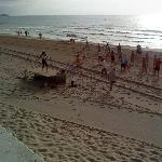 Beach aerobics to wake you  up!