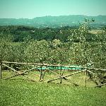 Piscine et jardin depuis la terrasse qui borde le bâätiment