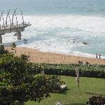 Hotel garden and direct access to the beach