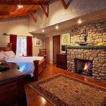 Frog Suite Bedroom