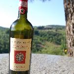 Tregole's wine w/ Tregole in background from our villa