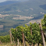 Foto di Tuscan Wine Tours with Angie