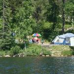 our site from dogtooth lake