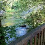 ranger riverside cabin view overhanging river