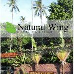 Infront of Natural Wing