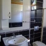 Bathroom In Room!