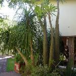 Salle pt déjeuner vue du jardin