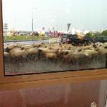 Blick aus dem Restaurantfenster
