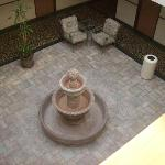 Atrium Just Needs Water and Plants
