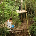 Jungle Top Zipline Adventure