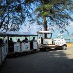 メイン施設と南側のビーチを往復するシャトル