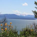 This is Lake Yellowstone