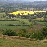 The beautiful hillside