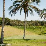 So where else can you play golf in the jungle? How cool is that?