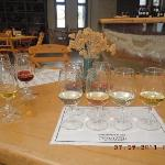 6 Wine tasting and tour for 9 euro
