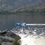 barca en lago sanabria