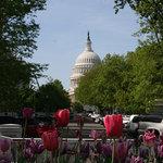 Context tours of DC explore the city through a scholarly lens