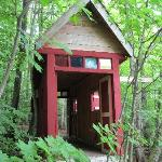 """Covered Bridge"" on property"