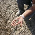 las piedras  de la playa de roquetas