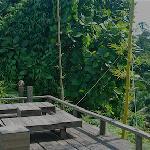 Hand made deck chairs overlook the beautiful jungle greenery