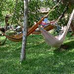 relax in garden