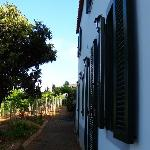 Our Cottage, Quinta das Vinhas, June/July 2011