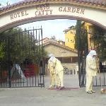Cats Garden Entrance