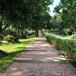 Resort Walk way