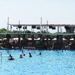 main pool - Farshad
