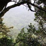 Neverland balcony view