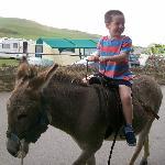 josh enjoying donkey ride