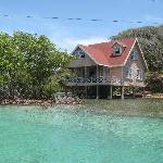 Beautiful homes on the Mangrove Tour