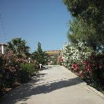 Gardens @ Eriphilly
