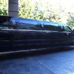 free limo rides