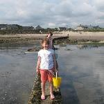 hunting for crabs