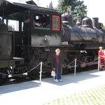 Mt. Rainier Scenic Railroad Foto