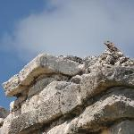 Mayen Ruins