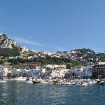 Capri harbour