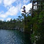 Jumping In!!  Captain Bill's Blue Hole