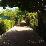 The walkway to the beach club