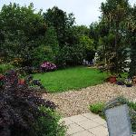 Rear garden with orchard behind trees all fenced and dog friendly