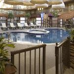 Atrium Swimming Pool and Hot Tub