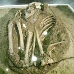skeleton found at the ceremonial center
