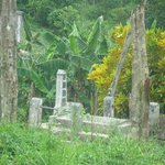 Family Graves along the road