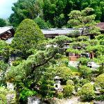 Fujioto's front garden